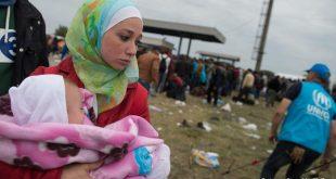 رقم قياسي في عدد الولادات لأمهات أجنبيات في ألمانيا