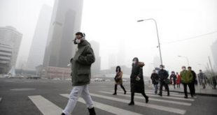 دراسة تكشف كيف تصل جسيمات الهواء الملوثة إلى الدم وتتلف القلب