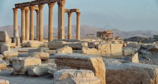 مصادر موالية: شركات خليجية تسعى لاستئناف الاستثمار في مناطق سيطرة الأسد
