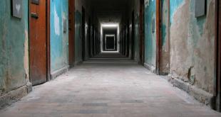 29 إعلامياً قضوا تحت التعذيب في معتقلات نظام الأسد