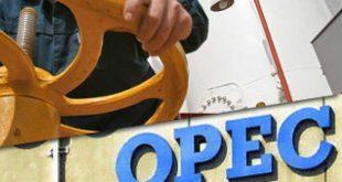 «أوبك» تقول إنها تربح معركة التخلص من تخمة المعروض النفطي