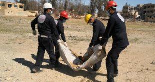 انتشال جثث من مقبرة جماعية في مدينة الرقة