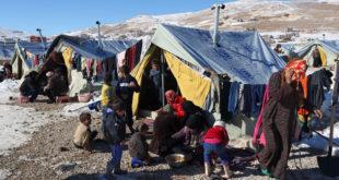 """""""رايتس ووتش"""" تدين إجبار سوريين في لبنان على العودة إلى سوريا"""